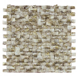 A18014 - Natural Brown Fresh Water Shell Tooth Mosaic Tile 10.67 Sq.Ft